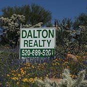 Dalton Realty logo