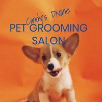 Cindy's Divine Pet Grooming Salon logo
