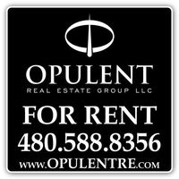 Opulent Real Estate Group LLC logo