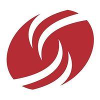 Dress for Success Phoenix logo