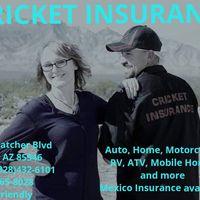Cricket Insurance logo