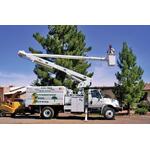 Cottonwood Tree Service logo