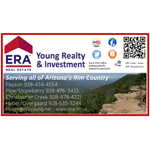 ERA Young Realty & Investment logo