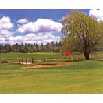 Pine Meadows Country Club Bar & Grill  logo
