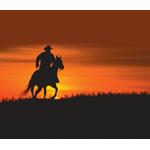 Western Companies logo