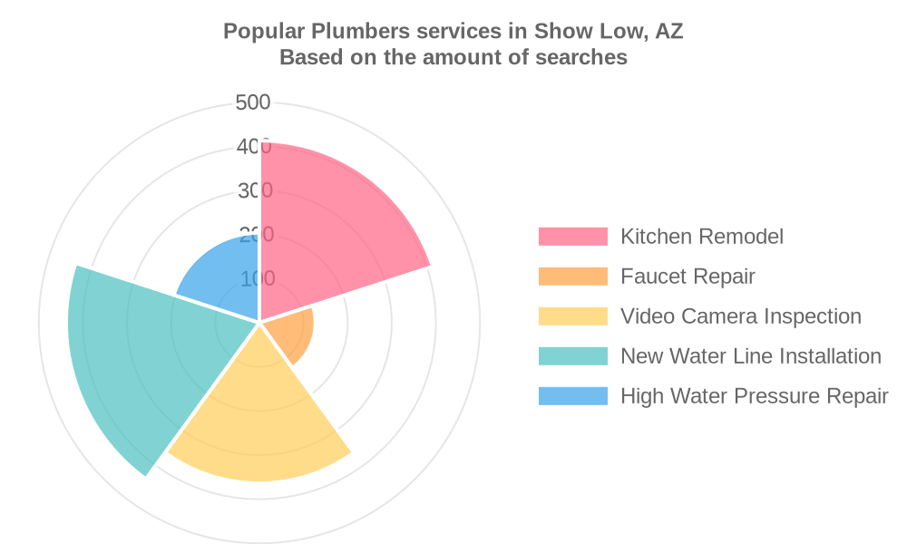 Popular services provided by plumbers in Show Low, AZ