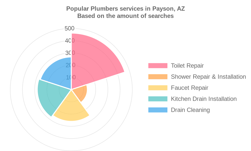 Popular services provided by plumbers in Payson, AZ