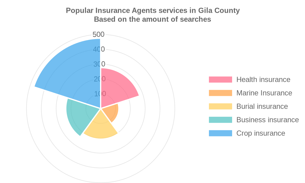 Popular services provided by insurance agents in Gila County