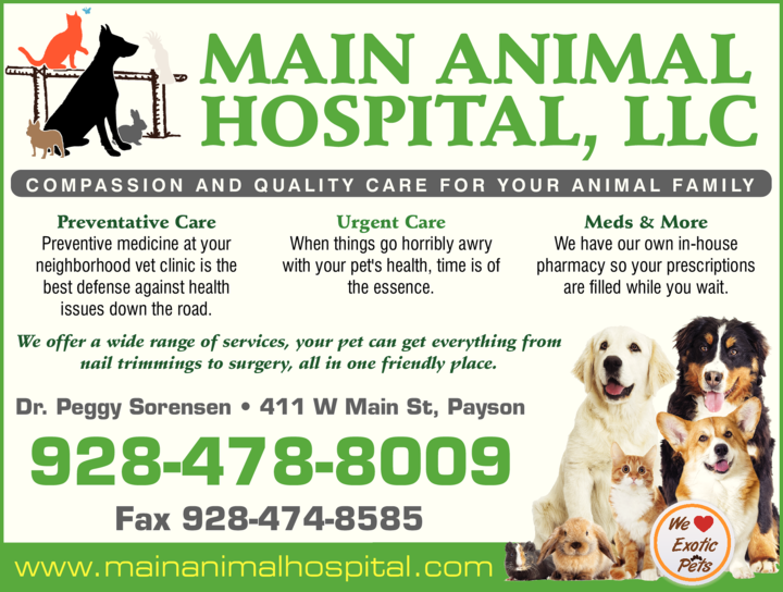 Yellow Pages Ad of Main Animal Hospital Llc