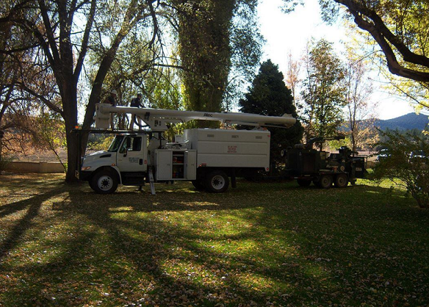 Photo uploaded by Bob Lee & Sons Tree Service